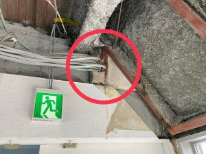塔屋の漏水調査4