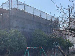 scaffold3